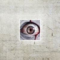 Logo du podcast Nawiedzony Podcast #242 Przestraszenia. Horror na faktach