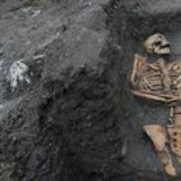 Logo du podcast Medieval Bones, Vaccine Rollout, Florida Panthers. Jan 29, 2021, Part 2