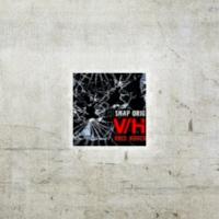 Logo of the podcast Nawiedzony Podcast #248 V/H/S