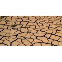 Logo du podcast Notre Terre, Notre Maison, Notre Futur: lutte contre la désertification!