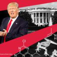 Logo du podcast Trump, the Ex-Lobbyist and 'Chemically Castrated' Frogs