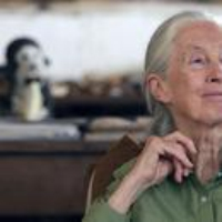 Logo of the podcast Jane Goodall, Coronavirus Update, Science Diction. March 20, 2020, Part 1