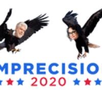 Logo of the podcast Imprecision 2020