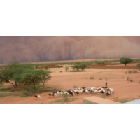 Logo du podcast Sahel : état d'alerte générale.