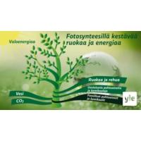 Logo of the podcast Hiilineutraali maailma – korvaavatko yhteyttämisen kautta syntyneet suorat biopolttoaineet fossiili…