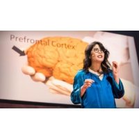 Logo du podcast The brain-changing benefits of exercise | Wendy Suzuki