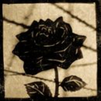 Logo du podcast The Black Rose