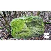 Logo du podcast Vihreän kiven salaisuus