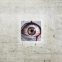 Logo du podcast Nawiedzony Podcast #332 Przestraszenia. Horror na faktach (S02)