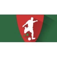 Logo of the podcast Botola Pro : une saison pas comme les autres