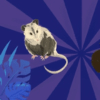 Logo du podcast Endemic Diseases, Insects and Light, Opossum vs Aye-Aye. Sept 17, 2021