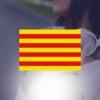 Image de la categorie Catalogne