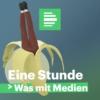 Logo du podcast Eine Stunde Was mit Medien - Deutschlandfunk Nova