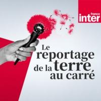 Logo du podcast Le reportage de la terre au carré