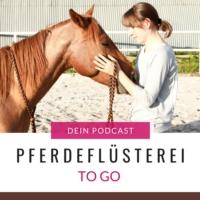 Logo du podcast Pferdeflüsterei TO GO! Der Podcast für Pferdemenschen mit Herz