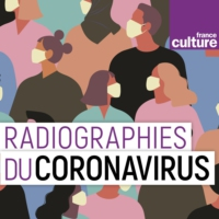 Logo du podcast Radiographie du coronavirus : l'immunité collective est-elle possible ?