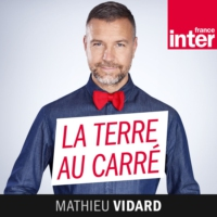 Logo of the podcast La Terre au carré