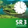 Logo du podcast Region am Nachmittag