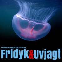 Logo of the podcast Undervandsjagt & fridykning - Uvpodcast.