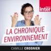 Logo of the podcast La chronique environnement