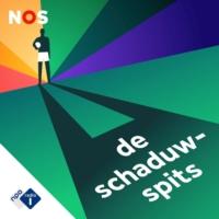 Logo du podcast De Schaduwspits