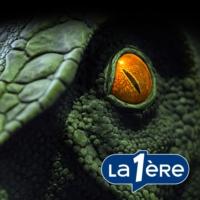 Logo du podcast Du monstre du Loch Ness au yéti : sur la piste des créatures mystérieuses