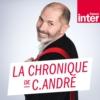 Logo of the podcast La chronique de Christophe   André