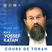 Logo of the podcast Cours de Torah & Thèmes