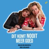 Logo of the podcast Dit Komt Nooit Meer Goed