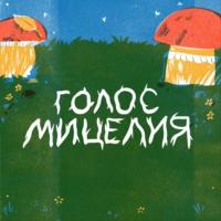 Logo du podcast Голос мицелия
