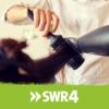 Logo of the podcast Der SWR4 Frisör