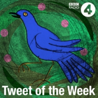 Logo du podcast Satish Kumar's Tweet of the Week, Pt 2