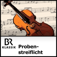 Logo of the podcast Probenstreiflicht
