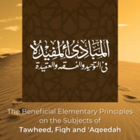 Logo du podcast The Beneficial Elementary Principles