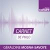 Logo of the podcast Carnet de philo