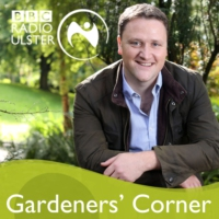 Logo du podcast Gardeners' Corner with David Maxwell