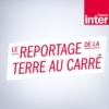 Logo of the podcast Le reportage de la terre au carré