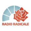 Logo of the podcast Radio carcere