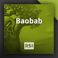 Logo du podcast Baobab