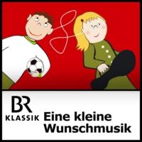 Logo of the podcast Eine kleine Wunschmusik