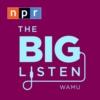 Logo du podcast The Big Listen