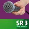 Logo du podcast Künstlerinterviews