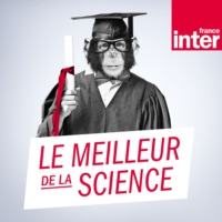 Logo du podcast Le meilleur de la science
