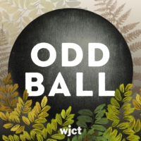 Logo du podcast Odd Ball