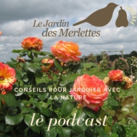 Logo of the podcast SOIGNER LES ARBUSTES D'ORNEMENT