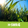 Logo of the podcast SWR1 RP Anstöße | SWR4 Morgengruß