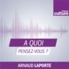 Logo of the podcast A quoi pensez-vous ?