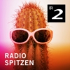 Logo of the podcast radioSpitzen - Kabarett und Comedy