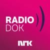Logo du podcast Radiodok