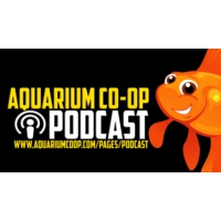 Logo du podcast Real Fish Talk by Aquarium Co-Op
